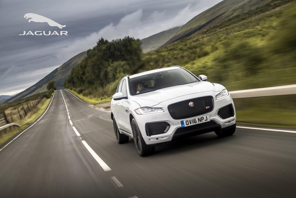 Jaguar-Full-bleed-background.png