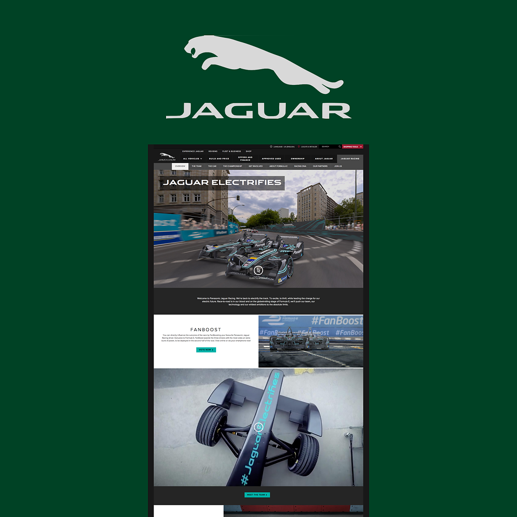 Jaguar-VisD.png